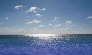 遠州灘の写真